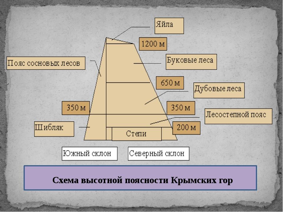 Схема высотной поясности Крымских гор