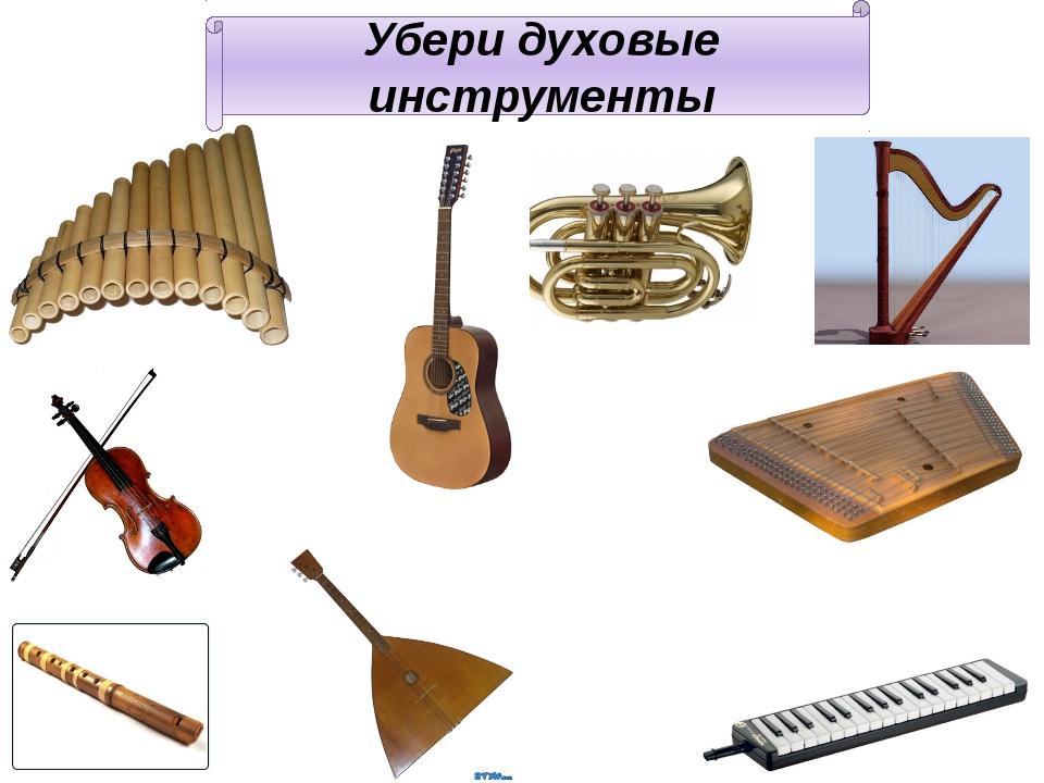 Убери духовые инструменты