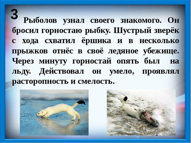 3 Рыболов узнал своего знакомого. Он бросил горностаю рыбку. Шустрый зверёк с...