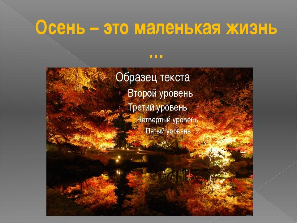 Осень – это маленькая жизнь …