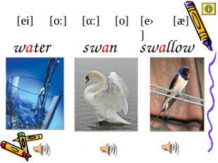 water [ei] [æ] [eə] [α:] [o:] [o] swan swallow