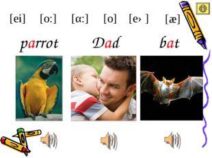Dad parrot [ei] [æ] [eə] [α:] [o:] bat [o]