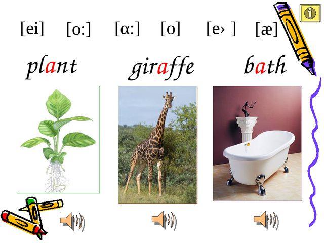giraffe plant [ei] [æ] [eə] [α:] [o:] bath [o]