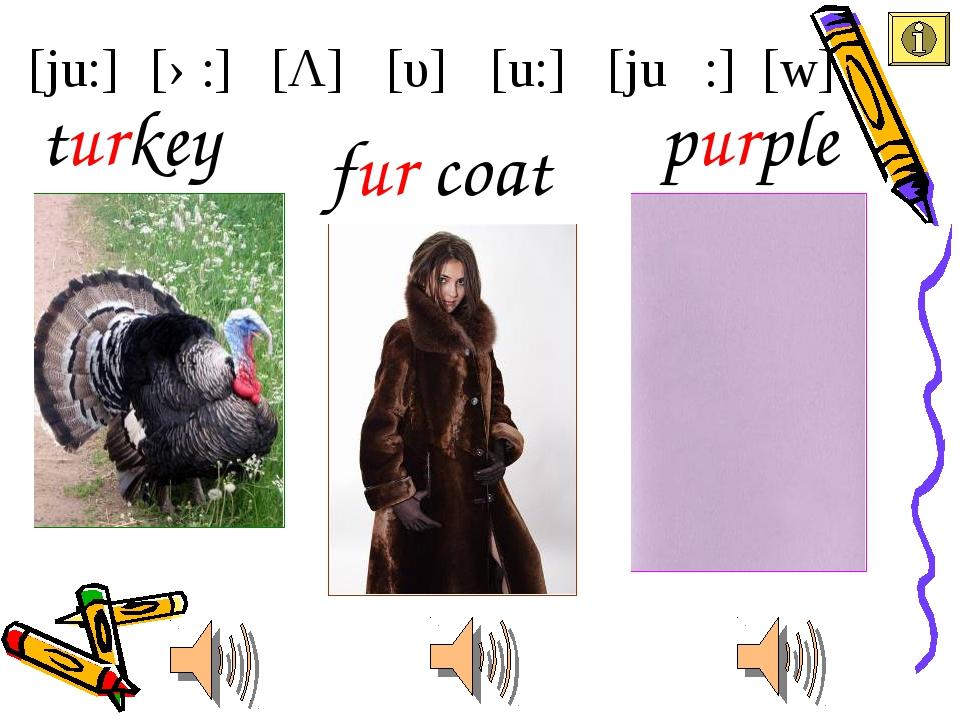 [ju:] [u:] [υ] [Λ] [ə:] [juə :] [w] fur coat turkey purple