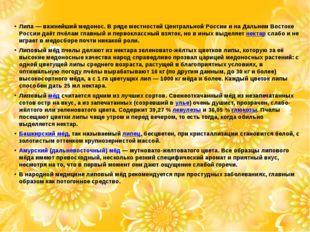 Липа— важнейшиймедонос. В ряде местностей Центральной России и на Дальнем В