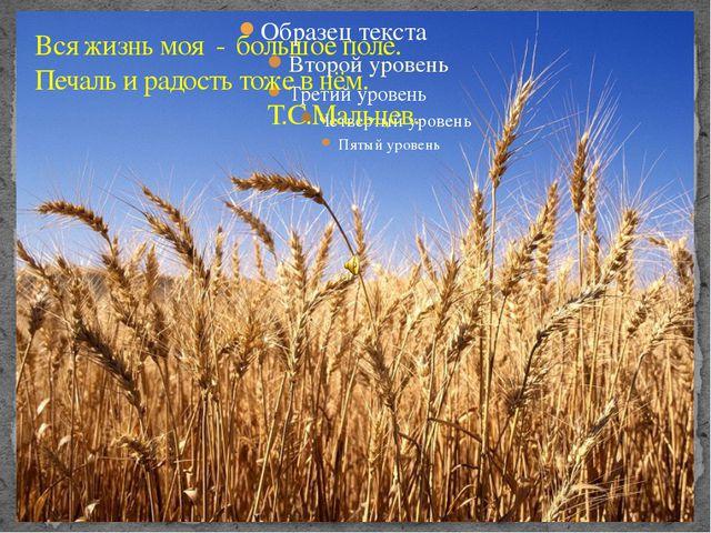 Вся жизнь моя - большое поле. Печаль и радость тоже в нём. Т.С.Мальцев.
