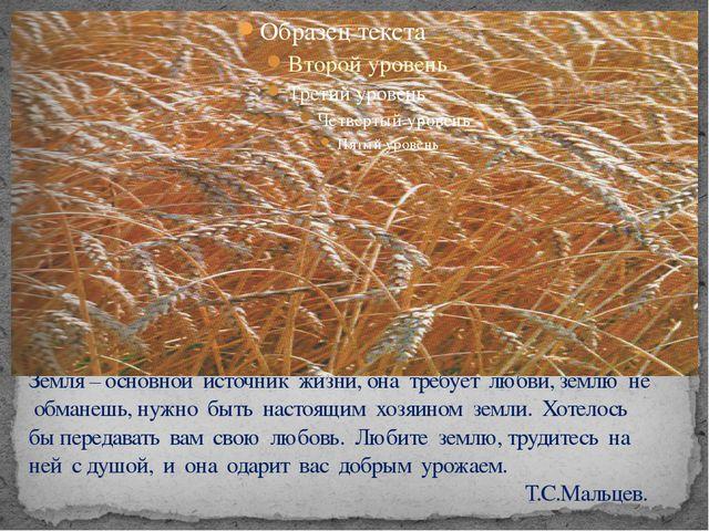 Земля – основной источник жизни, она требует любви, землю не обманешь, нужно...