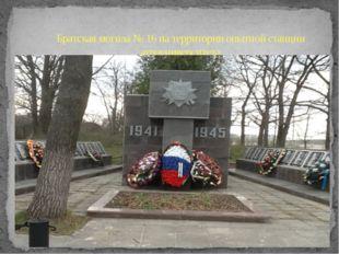 Братская могила № 16 на территории опытной станции агроуниверситета