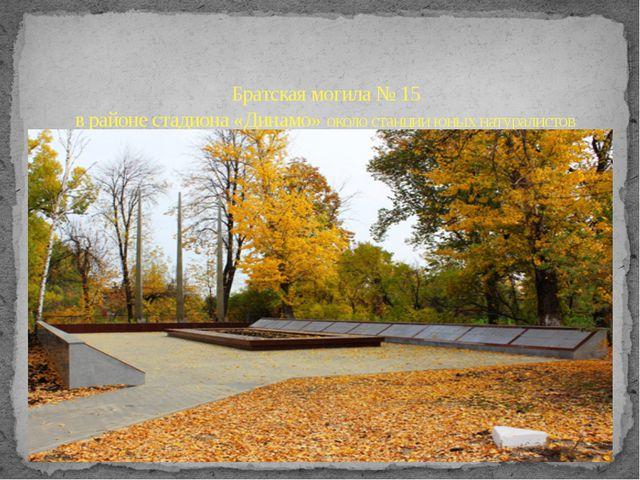 Братская могила № 15 в районе стадиона «Динамо» около станции юных натуралистов