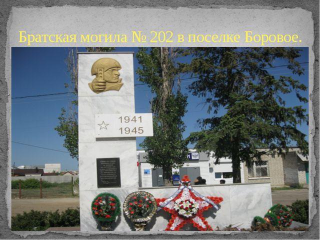 Братская могила № 202 в поселке Боровое.
