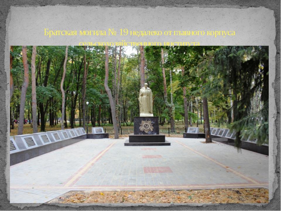 Братская могила № 19 недалеко от главного корпуса сельскохозяйственного инсти...