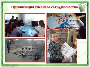 Организация учебного сотрудничества.
