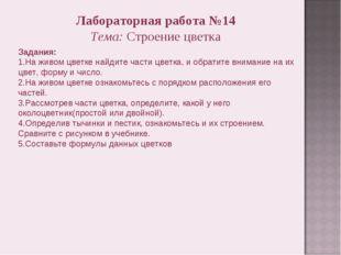 Лабораторная работа №14 Тема: Строение цветка Задания: 1.На живом цветке найд
