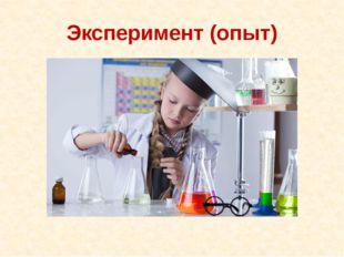 Эксперимент (опыт)