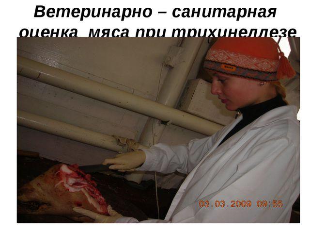 Ветеринарно – санитарная оценка мяса при трихинеллезе