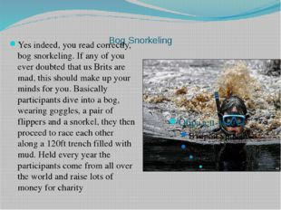 Bog Snorkeling Yes indeed, you read correctly, bog snorkeling. If any of yo