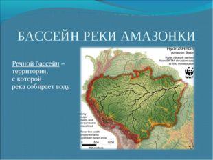 БАССЕЙН РЕКИ АМАЗОНКИ Речной бассейн – территория, с которой река собирает во