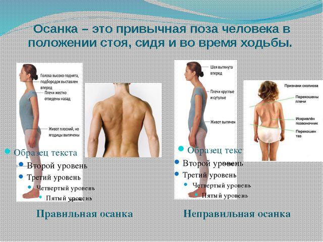 Осанка – это привычная поза человека в положении стоя, сидя и во время ходьбы...