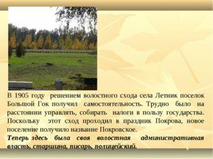 В 1905 году решением волостного схода села Летник поселок Большой Гок получил