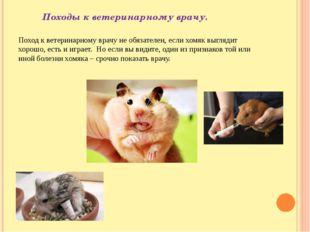Походы к ветеринарному врачу. Поход к ветеринарному врачу не обязателен, есл