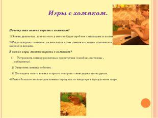 Игры с хомяком. Почему так важно играть с хомяком? 1) Хомяк двигается , и из