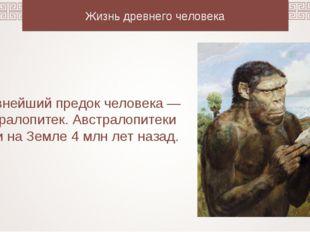 Жизнь древнего человека Древнейший предок человека — австралопитек. Австралоп