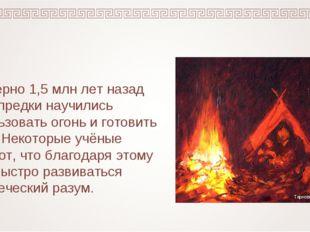Примерно 1,5 млн лет назад наши предки научились использовать огонь и готовит