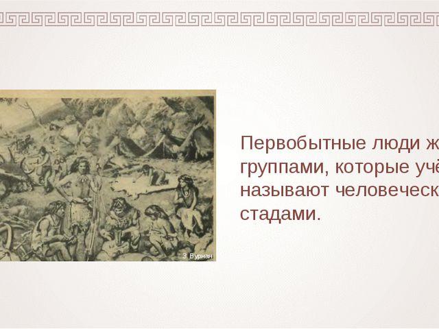 Первобытные люди жили группами, которые учёные называют человеческими стадами...