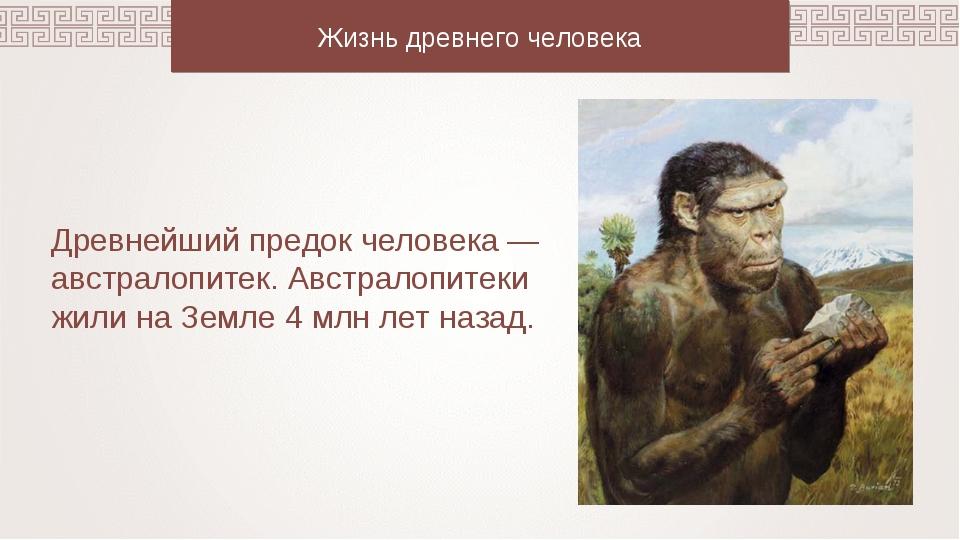 Жизнь древнего человека Древнейший предок человека — австралопитек. Австралоп...