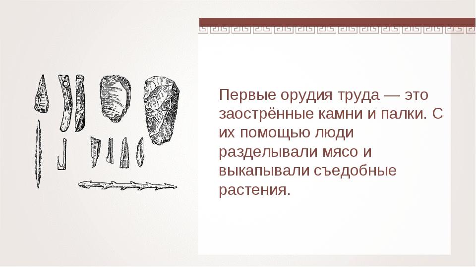 Первые орудия труда — это заострённые камни и палки. С их помощью люди раздел...