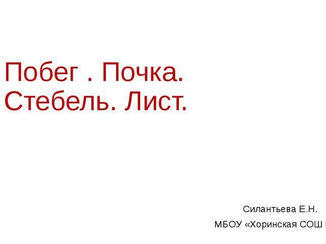Побег . Почка. Стебель. Лист. Силантьева Е.Н. МБОУ «Хоринская СОШ №2»