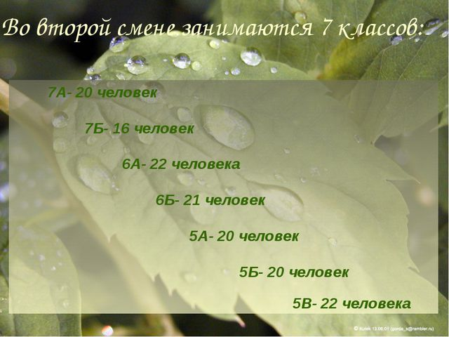 Во второй смене занимаются 7 классов: 7А- 20 человек 7Б- 16 человек 6А- 22 ч...