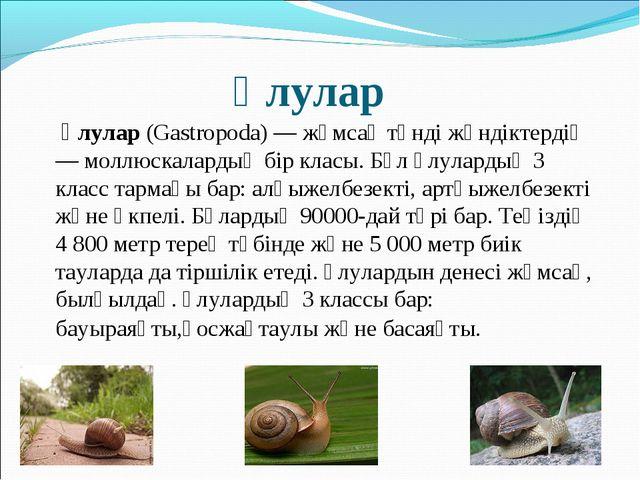 Ұлулар Ұлулар (Gastropoda) — жұмсақ тәнді жәндіктердің — моллюскалардың бір...