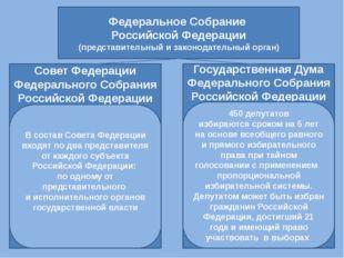 Федеральное Собрание Российской Федерации (представительный и законодательный
