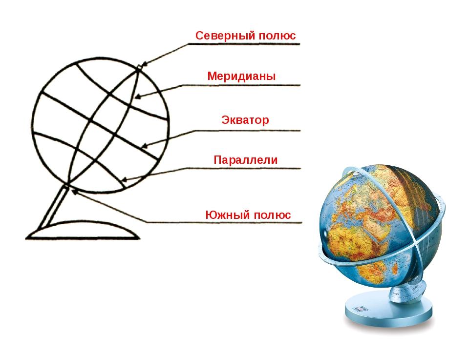 Северный полюс Меридианы Экватор Параллели Южный полюс