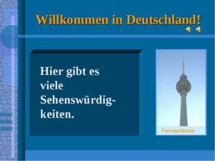 Willkommen in Deutschland! Hier gibt es viele Sehenswürdig-keiten. Fernsehturm