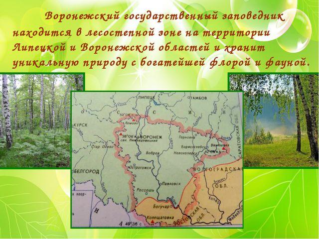 Воронежский государственный заповедник находится в лесостепной зоне на терри...