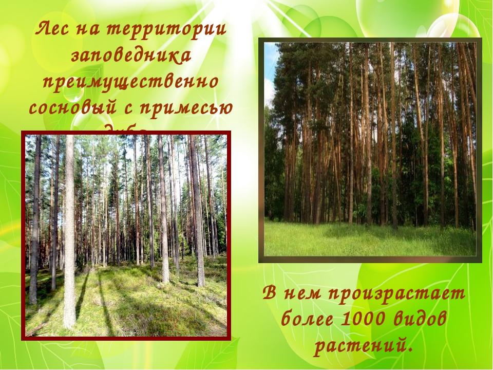 В нем произрастает более 1000 видов растений. Лес на территории заповедника п...