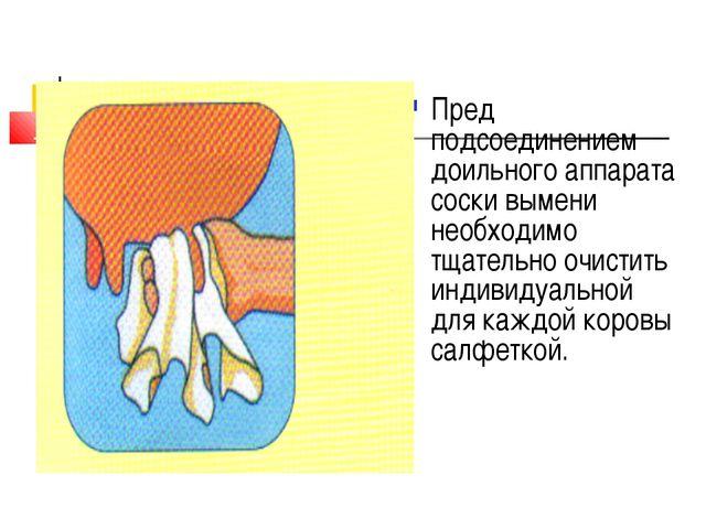 Пред подсоединением доильного аппарата соски вымени необходимо тщательно очис...