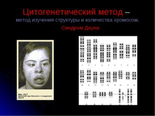 Цитогенетический метод– метод изучения структуры и количества хромосом. Синд