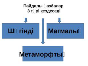 Пайдалы қазбалар 3 түрі кездеседі Шөгінді Магмалық Метаморфтық