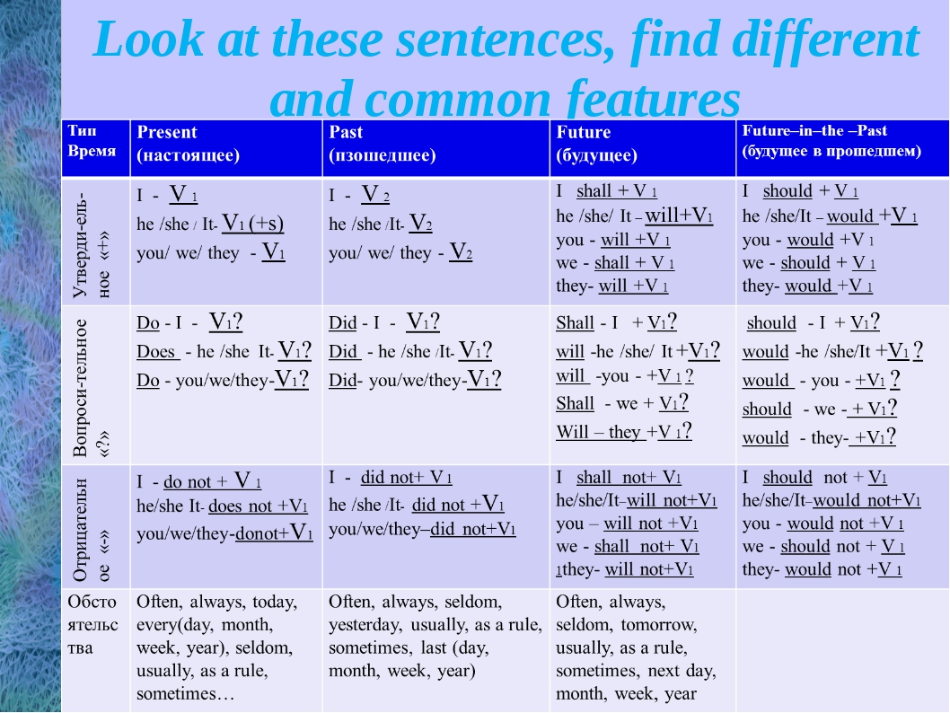 Look at these sentences, find different and common features