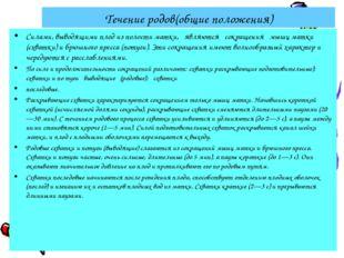 Течение родов(общие положения) Силами, выводящими плод из полости матки, явля