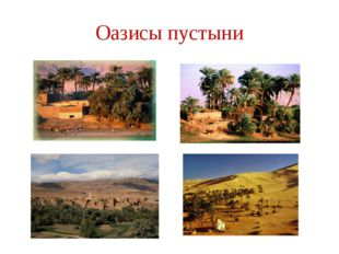 Оазисы пустыни