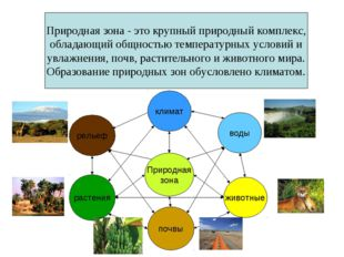 Природная зона - это крупный природный комплекс, обладающий общностью темпера