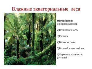 Влажные экваториальные леса Особенности: 1)Многоярусность 2)Вечнозеленность 3