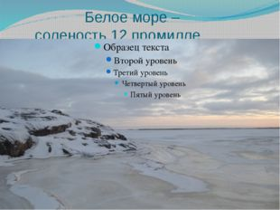Белое море – соленость 12 промилле