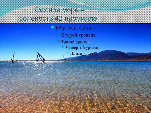 Красное море – соленость 42 промилле