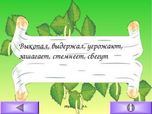 16.02.2011 Ибрагимова И.Б. Выкопал, выдержал, угрожают, зашагает, стемнеет, с