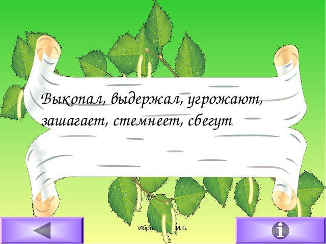16.02.2011 Ибрагимова И.Б. Выкопал, выдержал, угрожают, зашагает, стемнеет, с...